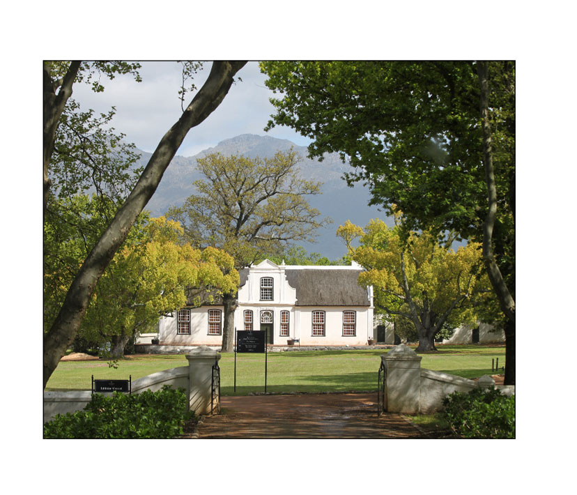 Stellenbosch Wine Country
